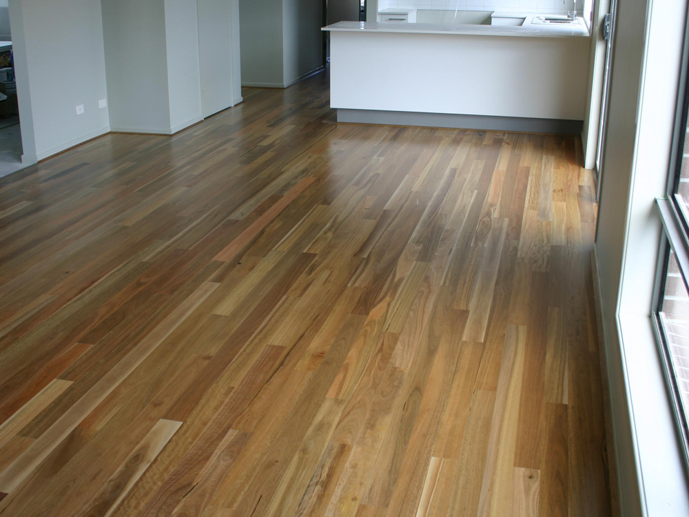 Spotted Gum 90mm Gallery